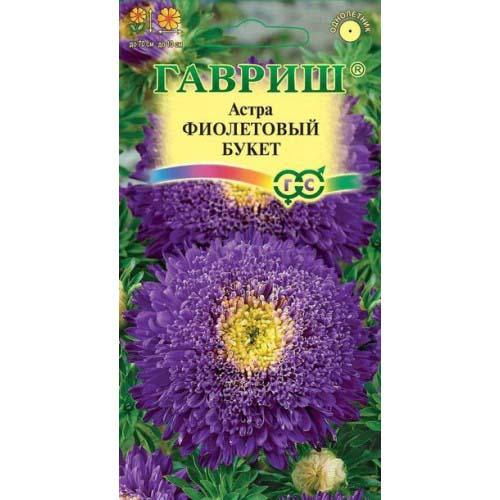 Астра Букет роскошный фиолетовый