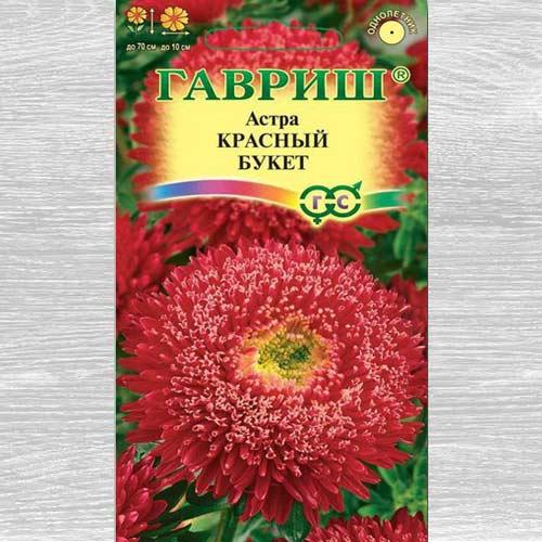 Астра Букет роскошный красный