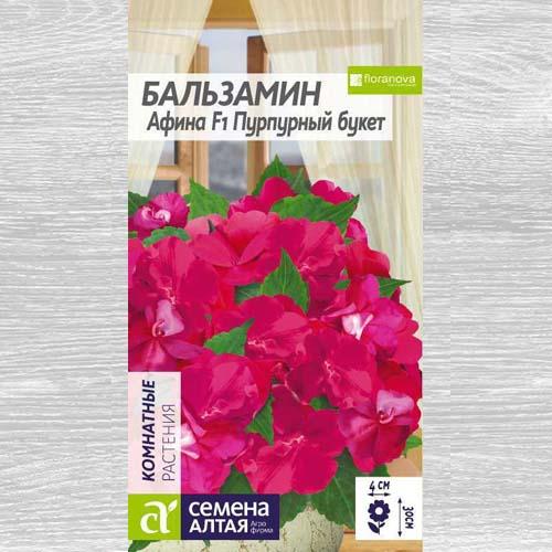 Бальзамин Афина Пурпурный букет F1