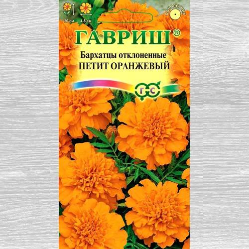 Бархатцы Петит оранжевый