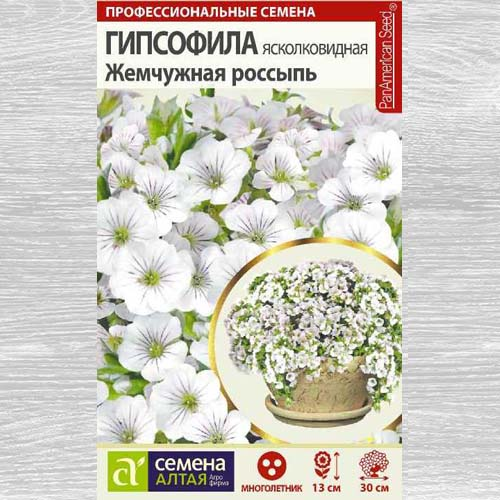 Гипсофила Жемчужная россыпь