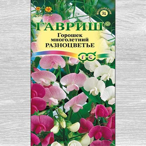 Горошек многолетний Разноцветье, смесь окрасок
