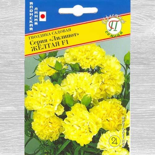 Гвоздика садовая Лилипот желтая F1