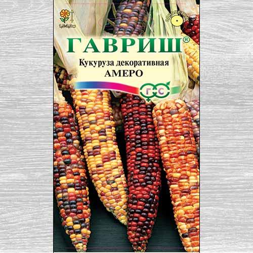 Кукуруза декоративная Амеро, смесь окрасок