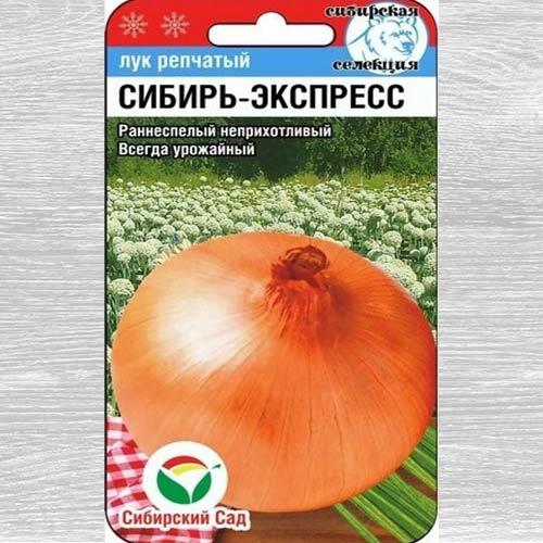 Лук репчатый Сибирь-экспресс