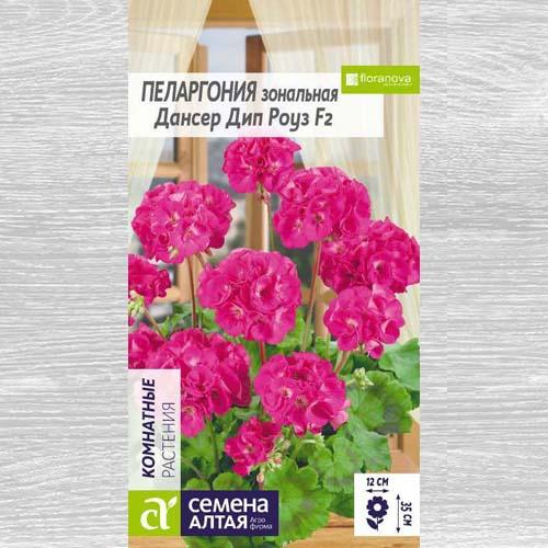 Пеларгония зональная Дансер Дип Роуз F2