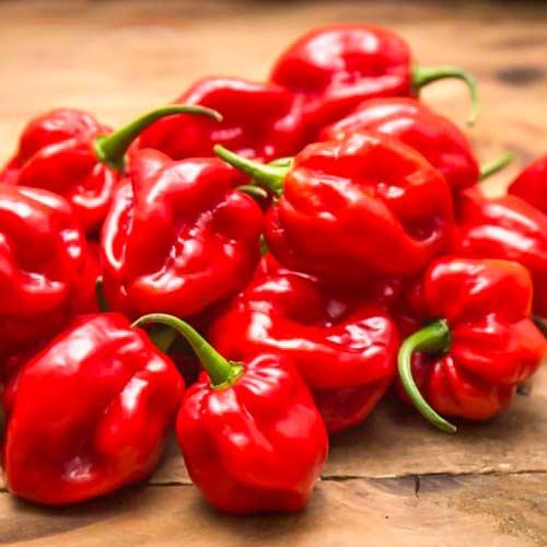 Перец острый Хабанеро красный
