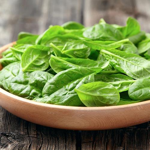 Салат листовой Русский деликатес